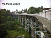 Magnolia bridge