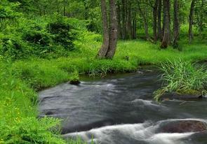 Water_stream